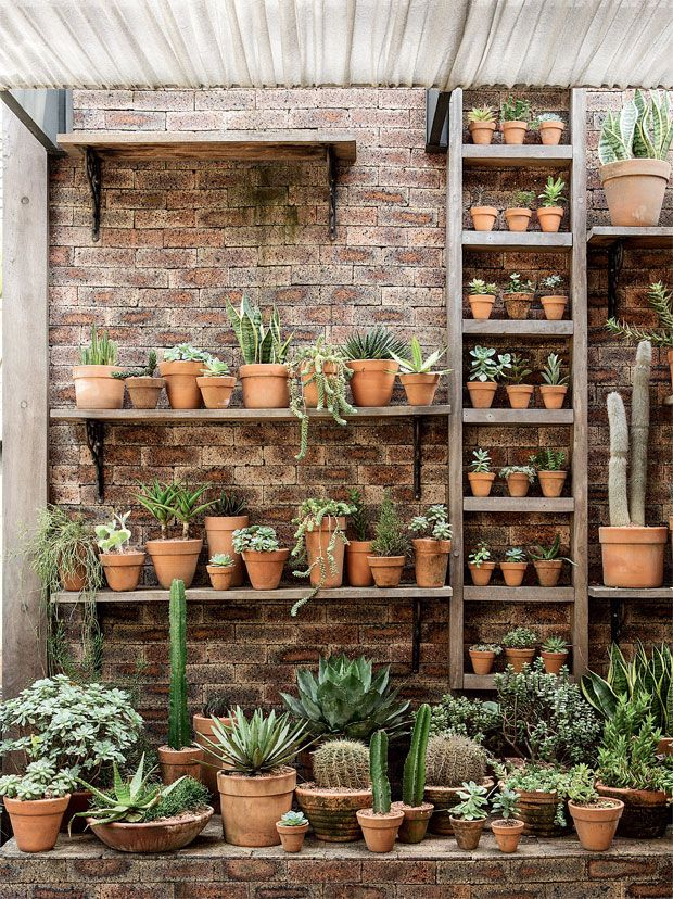 Succulents Garden Wall -a grouping of terra cotta pots add impact