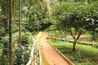 single bedroom cottages in munnar, munnar resorts with gardens, children play area, low budget cottages , 5 km from munnar town