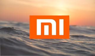 HP Xiaomi Mi 9 Dengan Kamera 48 MP Akan Segera Dirilis, Benarkah Demikian ?