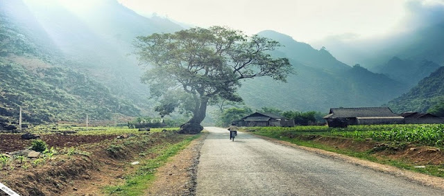 Explore Ha Giang Stone Plateau By Motorbike 2