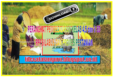 Administrasi mata pelajaran pertanian kelas 4,5 dan 6 SD
