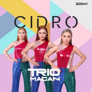 Trio Macan - Cidro