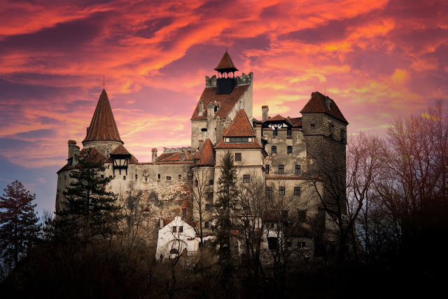 Rumunia i Bułgaria - nowa oferta win w Lidlu