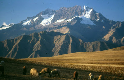 Excursions in the Mountains of Peru