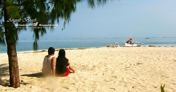 Anguib Beach - 7 Serene Beaches in the Philippines - Schadow1 Expeditions