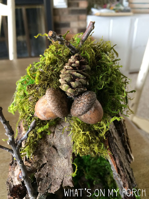 Fairy house acorns for decorations