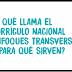 VIDEO ¿A qué llama el Currículo Nacional enfoques transversales y para qué sirven?