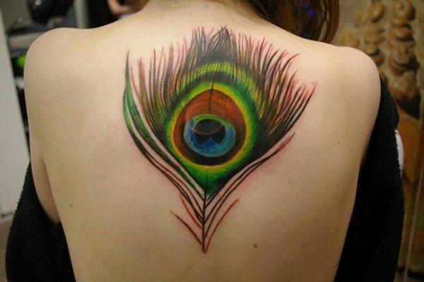 Tatuagens de pavão