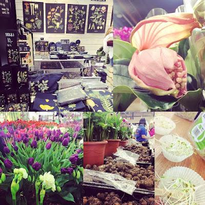 kevätmessut, tulppaaneja, ituja, sisustustuotteita, kallan mukuloita