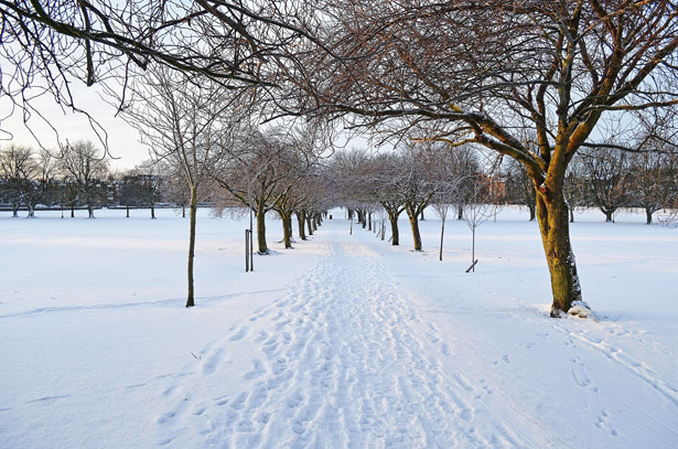 Write essay winter season Short Essay on Winter Season