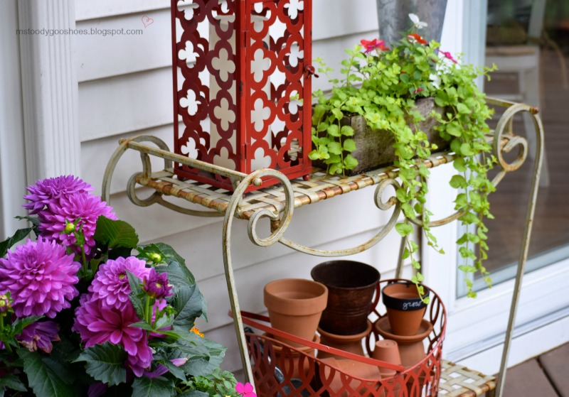 Summer Deck Decor | Ms. Toody Goo Shoes