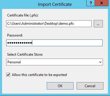 Import Certificate Window 1