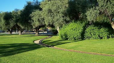 El Parque de La Granja a todo vapor