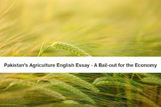 Pakistan's Agriculture English Essay - A Bail-out for the Economy