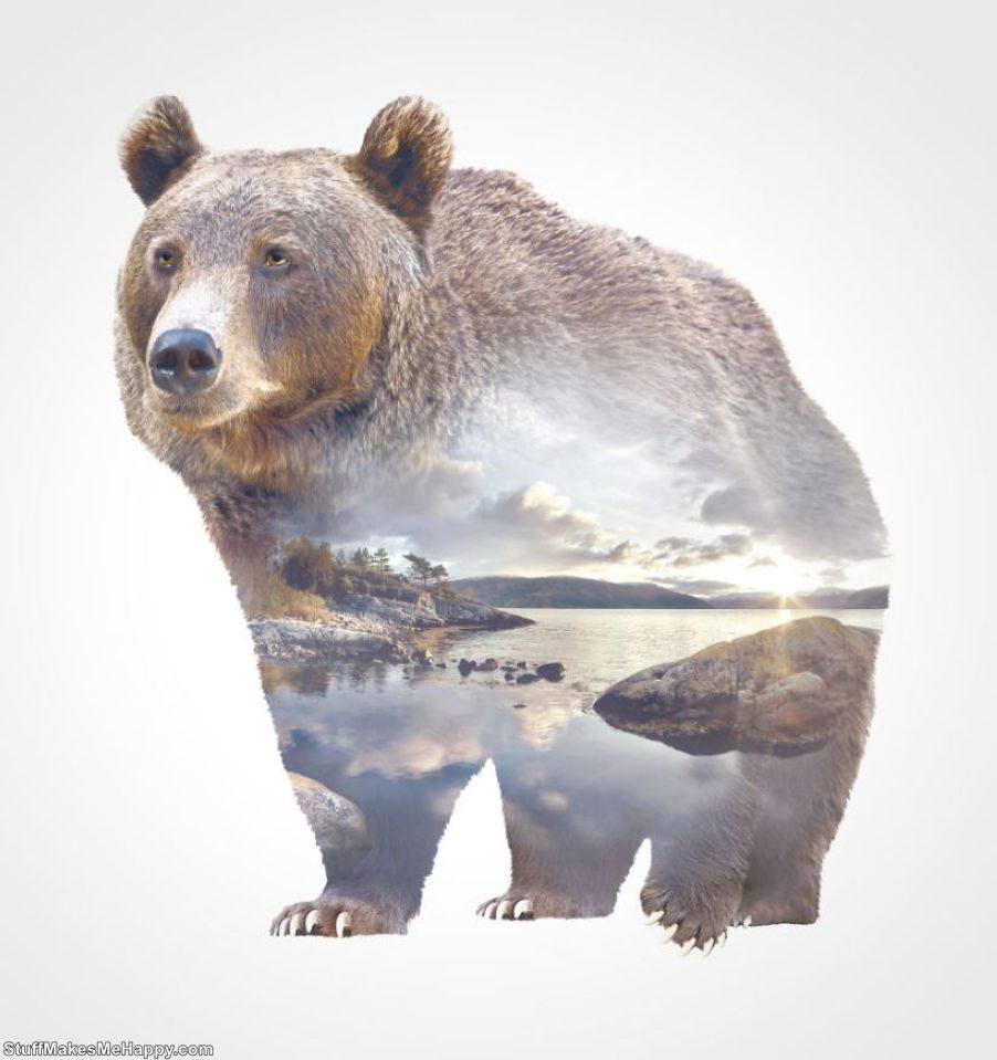 Double-Exposure Animal Portraits: Amazing Photo Superposition of Nature and Animals