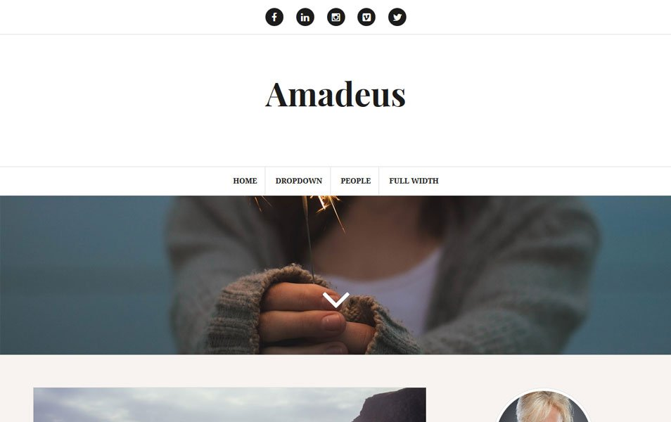 Amadeus Responsive WordPress Theme