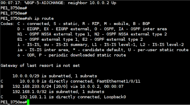 Cisco 3750 Routing Table after using Loki