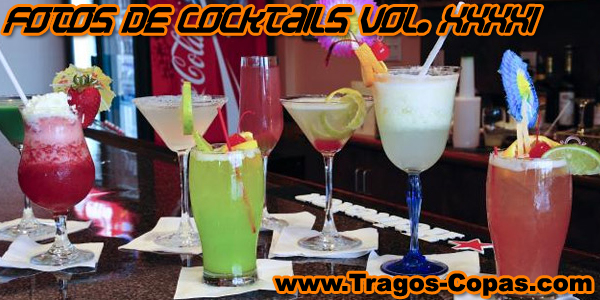 Fotos de Cocktails