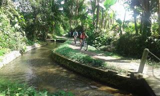 Bersepeda dari Kintamani ke Ubud