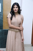 Hebah Patel in Brown Kurti and Plazzo Stuunning Pics at Santosham awards 2017 curtain raiser press meet 02.08.2017 008.JPG