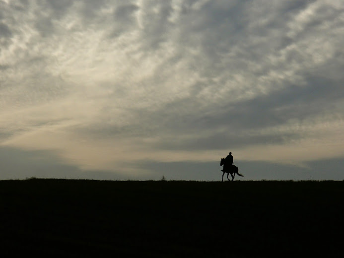 Orawa, Lipnica Wielka, Babia Góra, konie, jazda konna