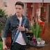 Mais UM? Novo clipe de ''Kally's Mashup'' é lançado, ''She's Gone''
