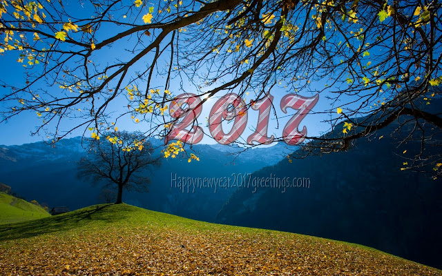 New Year 2017 Nature Full HD Images Download For Desktop