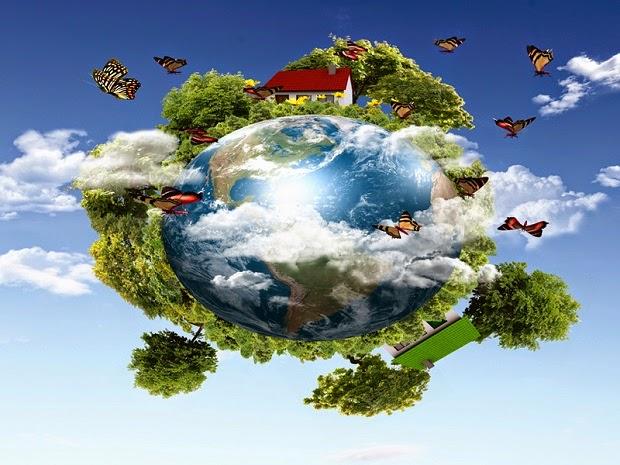 النظام البيئي ومكوناته