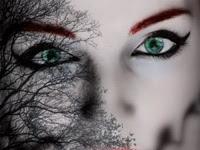 Resenha Nacional Híbrida - Série Neblina e Escuridão # 1 -  Mari Scotti