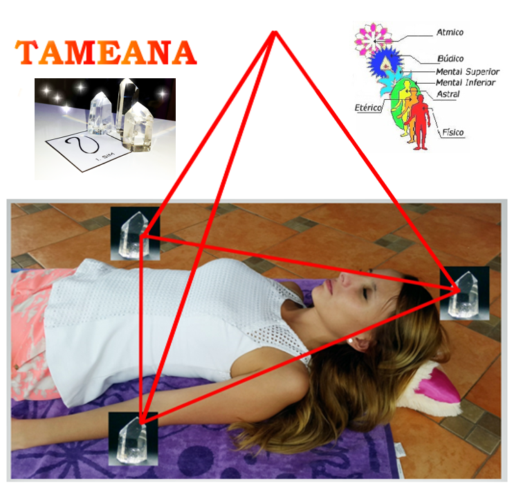 Resultado de imagen para TAMEANA