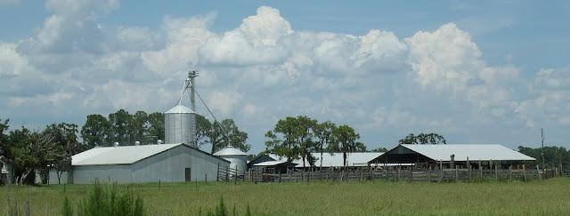 Ganaderias y granjas