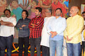 shatamanam bhavathi success meet-thumbnail-46