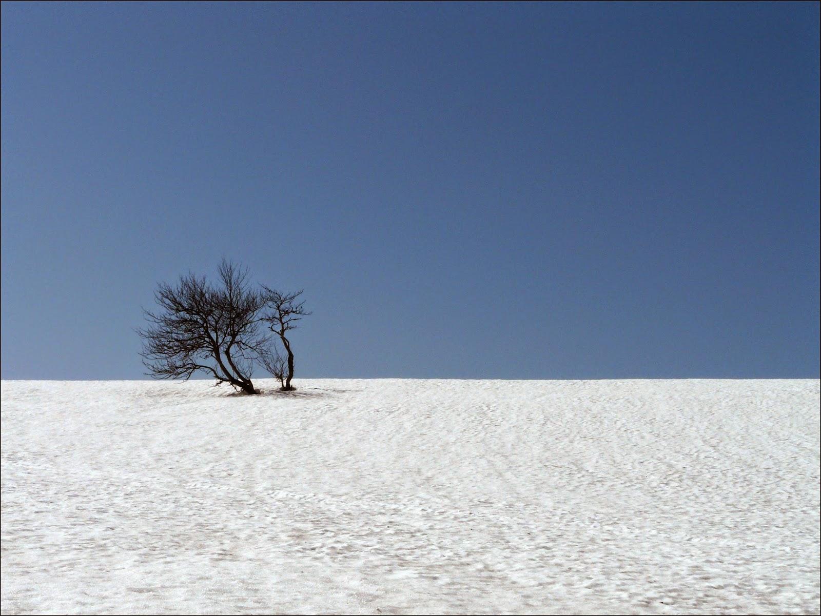Minimalismo y fotograf a de paisaje el paisaje perfecto for Minimalismo