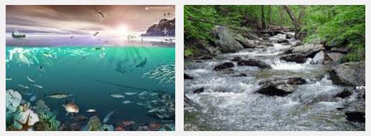 ekosistem alam