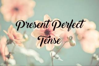 Materi, Rumus, dan Contoh Kalimat Present Perfect Tense