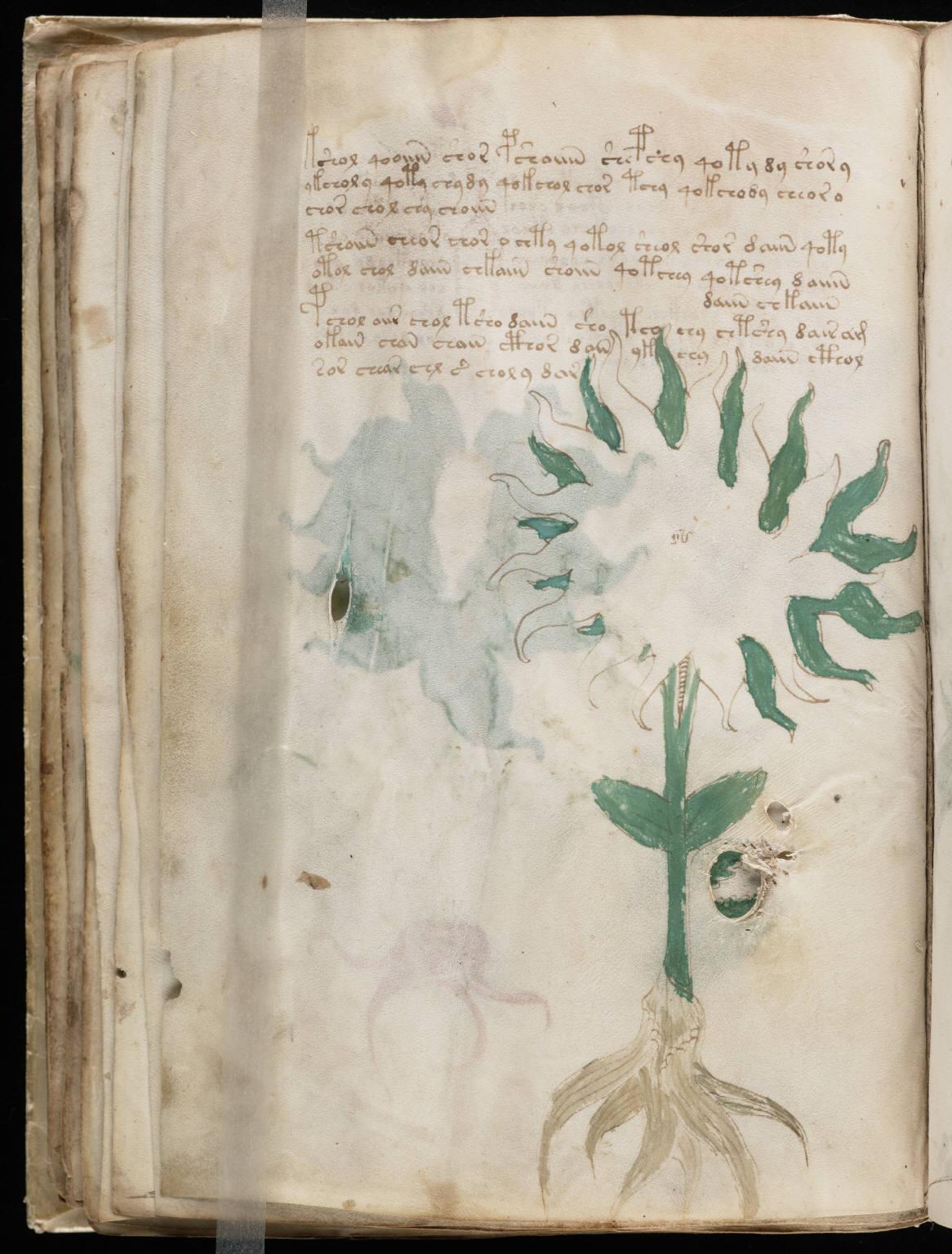manuscrito054