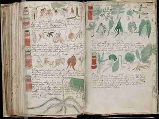 Очередная публикация о разгадке тайны знаменитого манускрипта Войнича