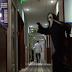 Απίστευτος Remi Gaillard! «Ξαναχτύπησε» ως serial killer σε ξενοδοχείο (video)