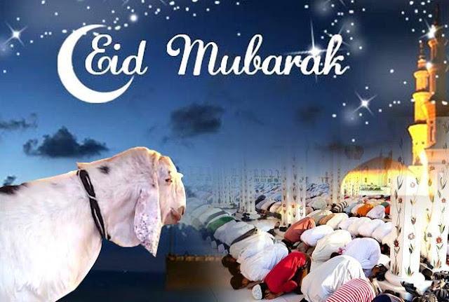 बकरीईद 22 अगस्त, भारत भर में मनाया जाएगा। कल बकरीईद के अवसर पर, स्कूलों और सरकारी कार्यालयों में छुट्टी की घोषणा की है।    ईद उल आधा, दुनिया भर में मुसलमानों द्वारा मनाए जाने वाले सबसे शुभ त्योहारों में से एक कल भारत में मनाया जाएगा। त्यौहार, जिसे भारत में बकर ईद और उपमहाद्वीप के कुछ हिस्सों के रूप में जाना जाता है, बलिदान के प्रथा द्वारा चिह्नित किया जाता है। इस अवसर पर, दिल्ली एनसीआर और भारत के कई राज्यों के कई स्कूलों और सरकारी कार्यालयों में एक छुट्टी की घोषणा की गई है। कलरा ईद अवकाश कल उत्तर प्रदेश, हरियाणा, तेलंगाना, आंध्र प्रदेश आदि में मनाया जाएगा। निजी कार्यालयों के लिए, सवाल यह है कि कल ईद अवकाश ही उनके संबंधित संस्थानों / कार्यालयों द्वारा उत्तर दिया जा सकता है। कृपया ध्यान दें कि अधिकांश इन राज्यों के निजी स्कूलों ने इसे कल छुट्टी भी घोषित कर दी है। हालांकि, निजी कार्यालय बंद नहीं हो सकते हैं। इन राज्यों में बैंक अवकाश के लिए, अधिकांश राज्य भी एक बैंक अवकाश देख रहे होंगे क्योंकि ईद उल आधा या आईडी उल जुहा एक प्रतिबंधित सार्वजनिक अवकाश है। व्यक्तियों के लिए, प्रतिष्ठान द्वारा जारी अधिसूचना का पालन करना उचित है। हालांकि, सरकारी और निजी स्कूल और कॉलेज कल बंद रहेंगे।      ईद-अल-आधा या 'बलिदान का पर्व' मुस्लिम समुदाय द्वारा इब्राहिम की इच्छा को सम्मानित करने के लिए मनाया जाता है ताकि वह अपने बेटे को भगवान के प्रति आज्ञाकारिता के कार्य के रूप में बलिदान दे सके। यह दो सबसे शुभ इस्लामी छुट्टियों में से दूसरा है, दूसरा ईद-अल-फ़ितर है। इस दिन, मुसलमान अपने बेहतरीन कपड़े पहनते हैं, प्रार्थना करने और अपने दोस्तों और परिवार से मिलने के लिए मस्जिद जाते हैं। बलि किए हुए जानवरों के हिस्से परिवार, दोस्तों और गरीबों के बीच तीसरे स्थान पर वितरित किए जाते हैं। टाइम्स नाउ से अपने सभी पाठकों को यहां एक बहुत ही विशेष ईद मुबारक है।
