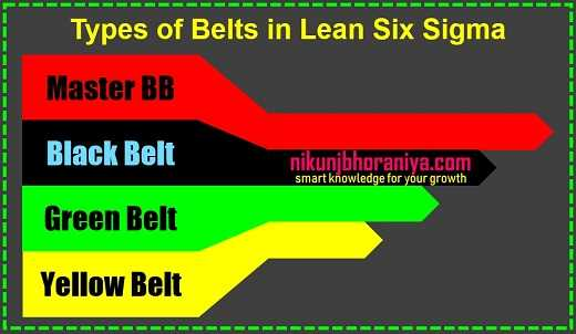 Types of Belts in Lean Six Sigma