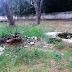 Moradores relatam abandono no Cemitério de Guarapiranga
