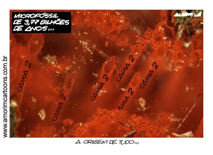 chargedodia04.jpg (709×516)