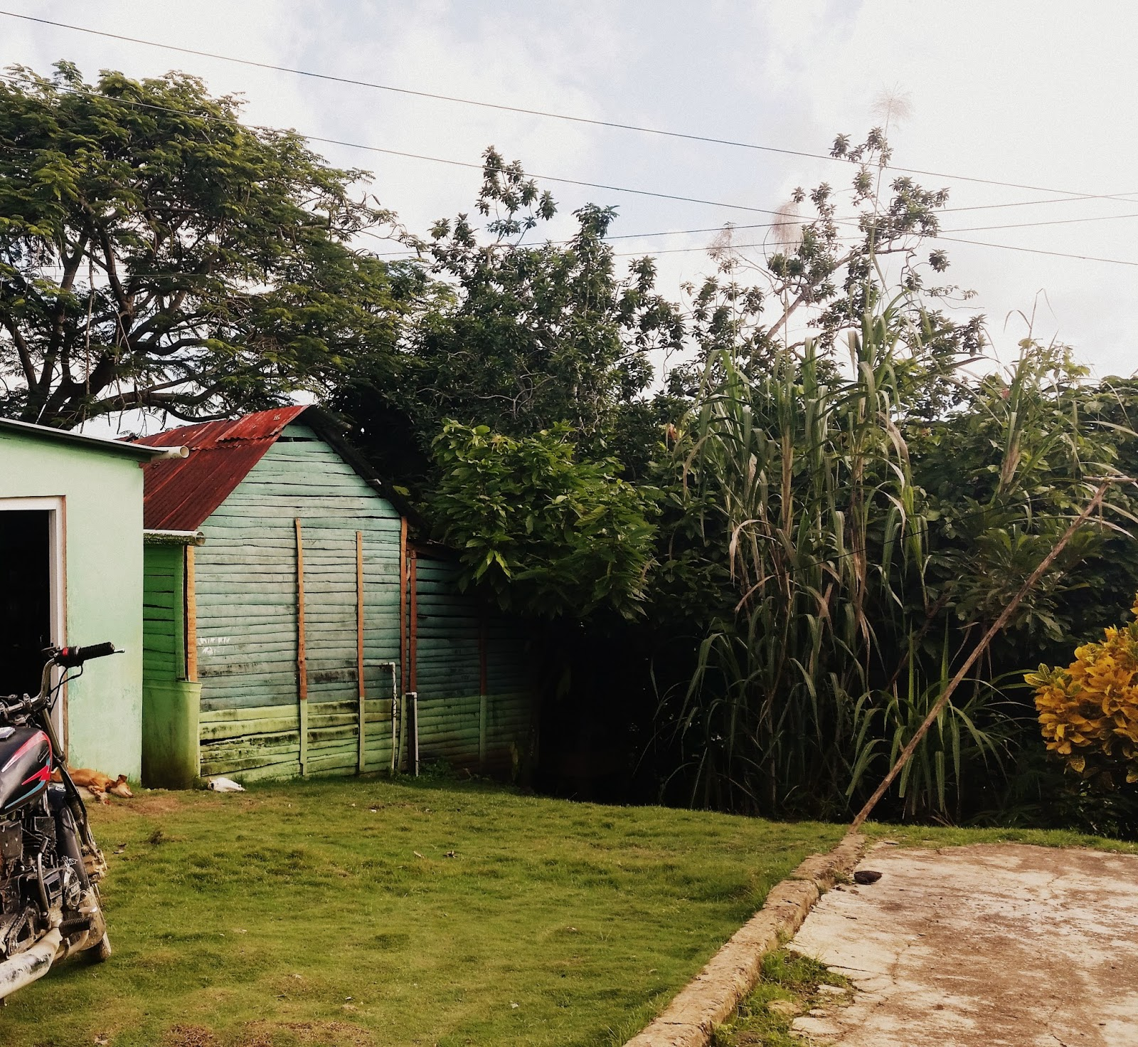 Rodzinne gospodarstwo na Dominikanie