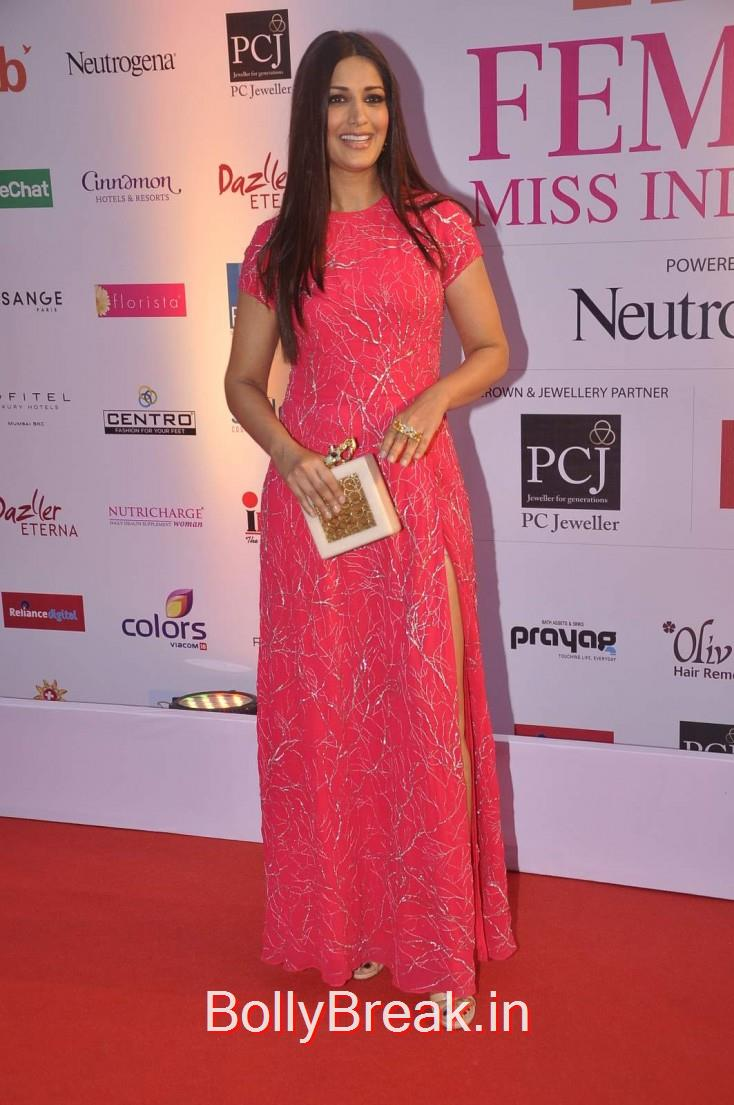 Sonali Bendre, Femina Miss India 2015 Red Carpet Photo Gallery