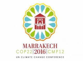 COP 22