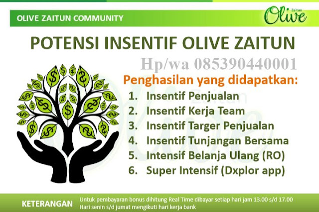 www.olivezaitun.com/iwanskp