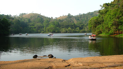 Wayanad is inwards the due north of Kerala too is known for beingness a beautiful loma station IndiaTravel; Wayanad inwards Early Summer