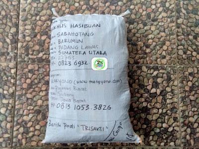 Benih pesana    MUKHLIS HASIBUAN Padang Lawas, Sumut   (Sesudah Packing)