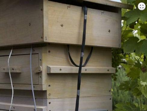 Νέο ηλεκτρονικό μηχάνημα που μας αποκαλύπτει την υγεία και την δυναμικότητα των μελισσιών έρχεται από την Γαλλία...