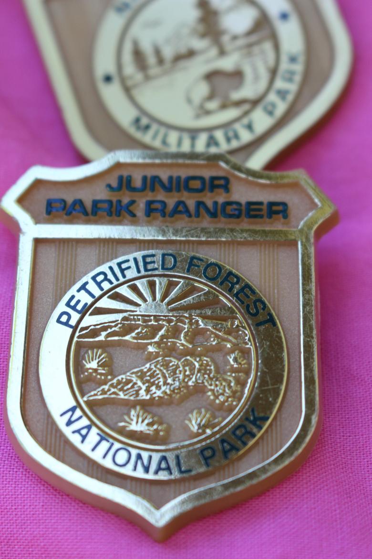 Junior Ranger Patch California State Parks round